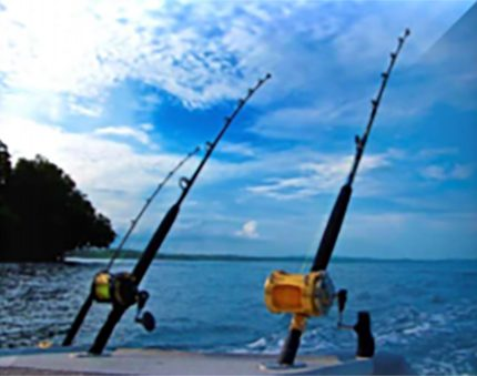 offshore-fishing-poles