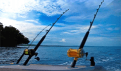 offshore fishing poles